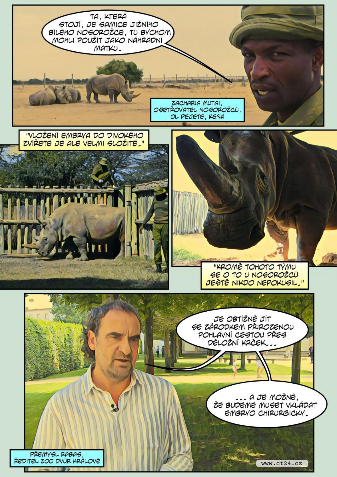Češi zachraňují nosorožce