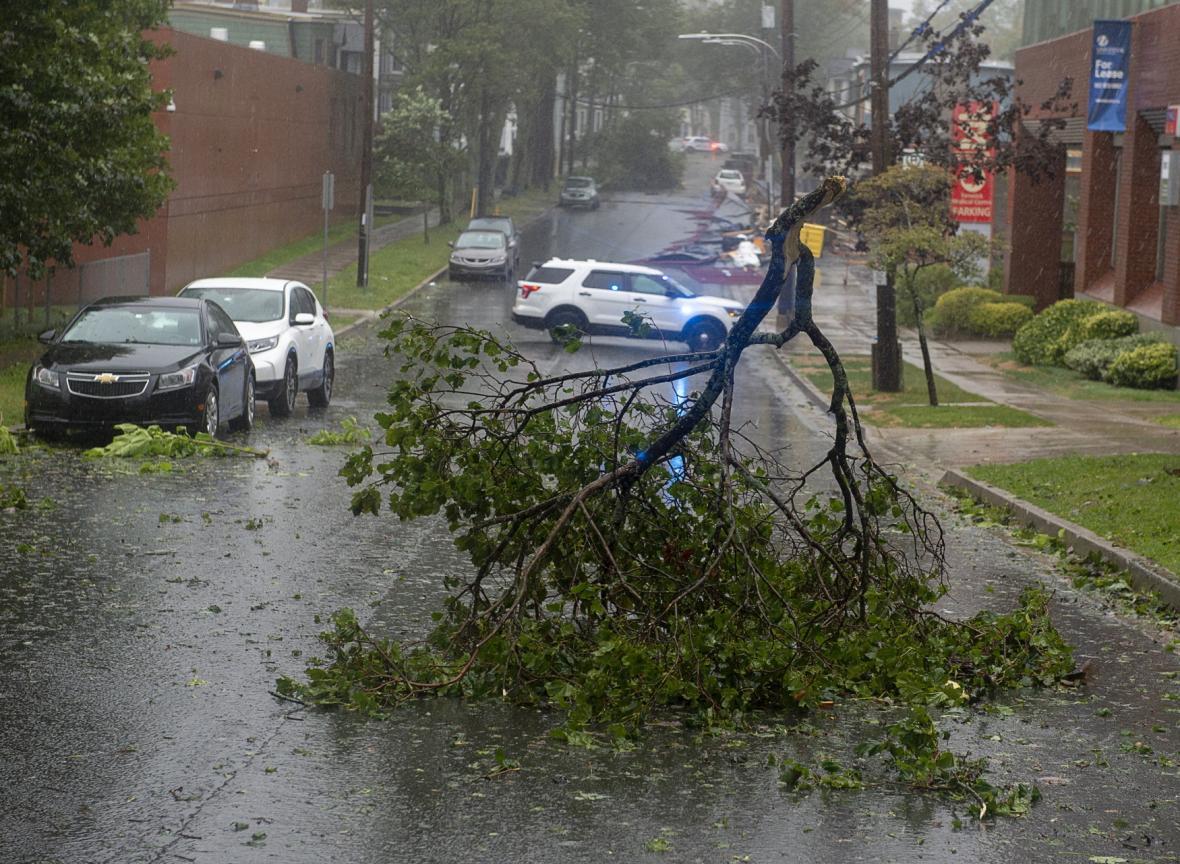 Bouře lámala stromy