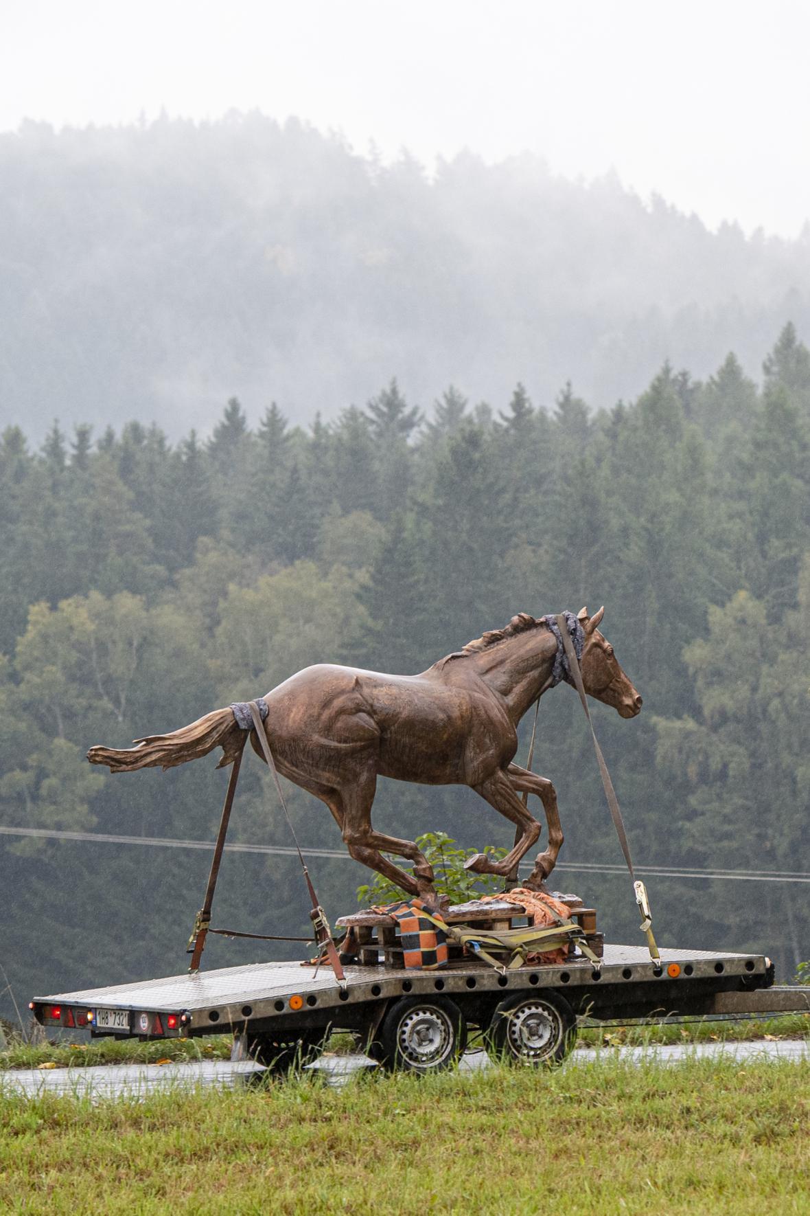 Bronzový Peruán cválá do Zámrsku