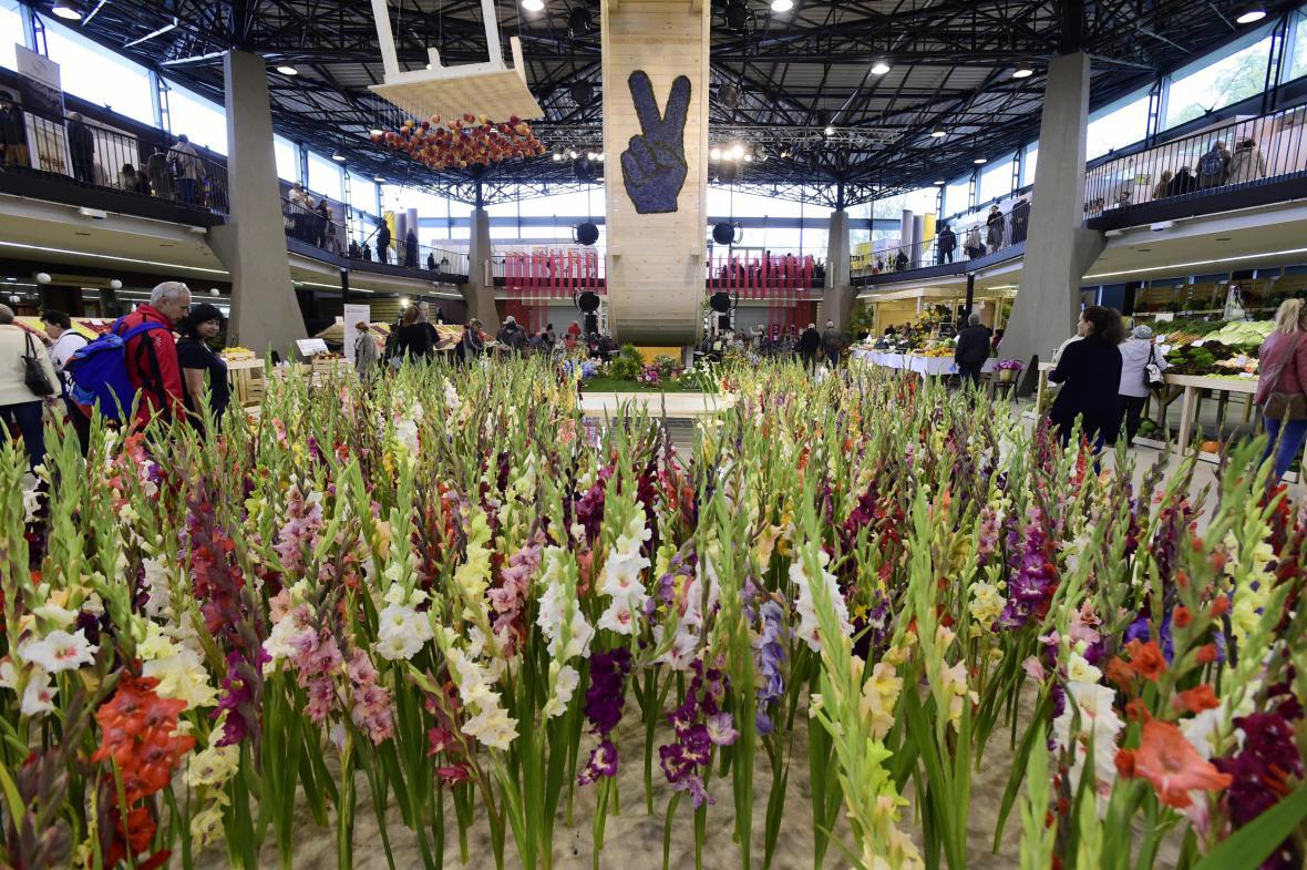 Podzimní etapa výstavy Flora Olomouc 2019
