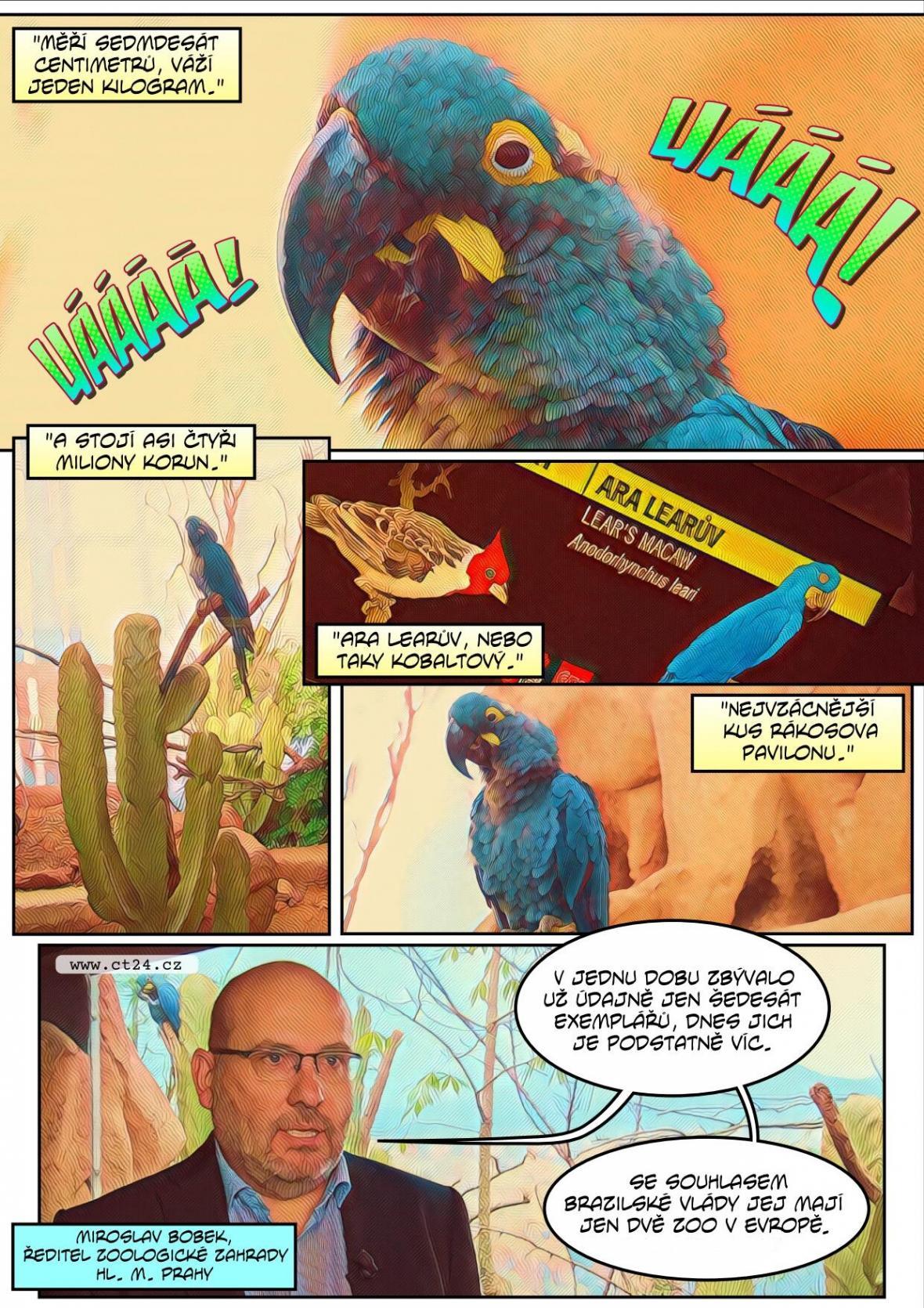Exotičtí ptáci v hlavním městě. Pražská Zoo otevřela nový pavilon