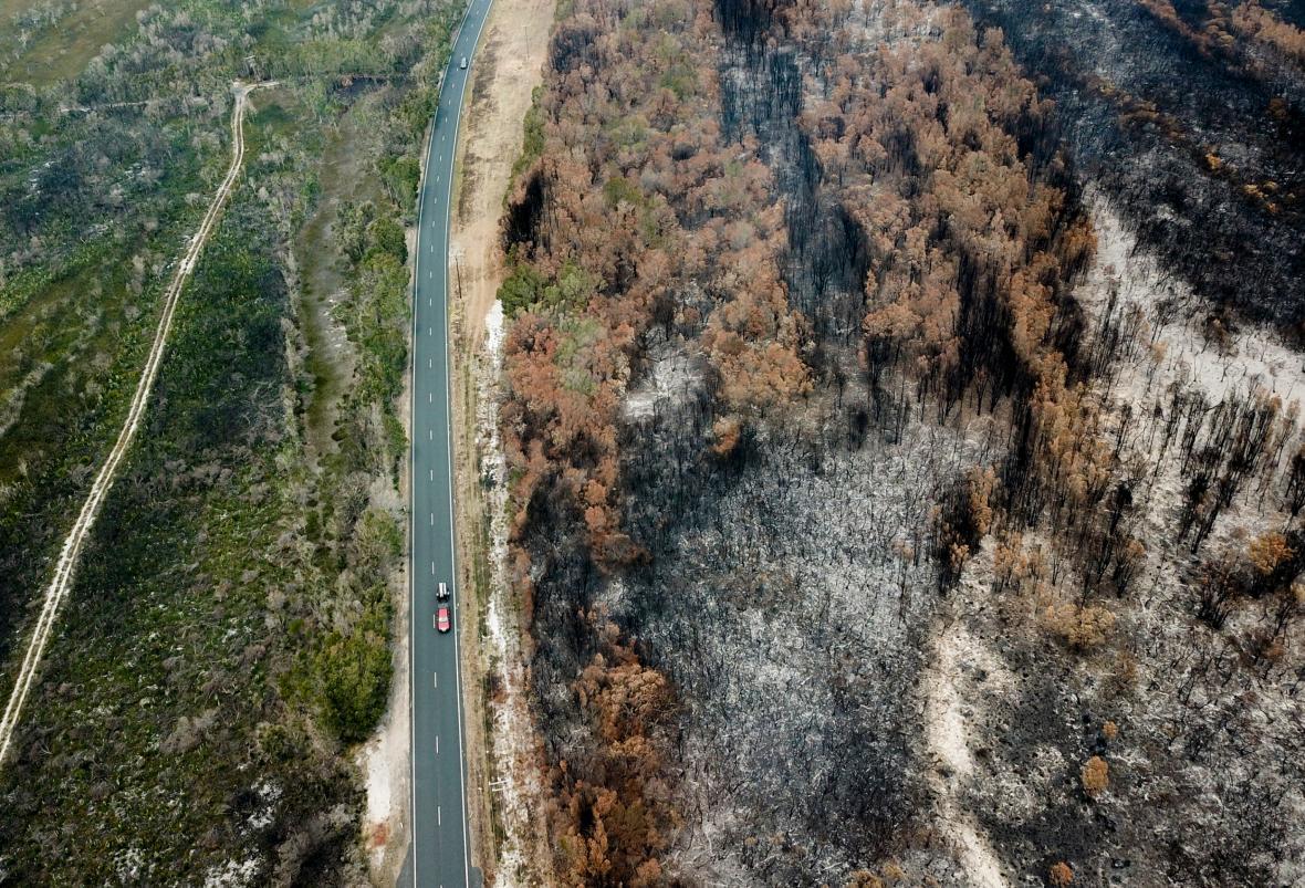 Kontrast mezi živou a spálenou vegetací v Novém Jižním Walesu