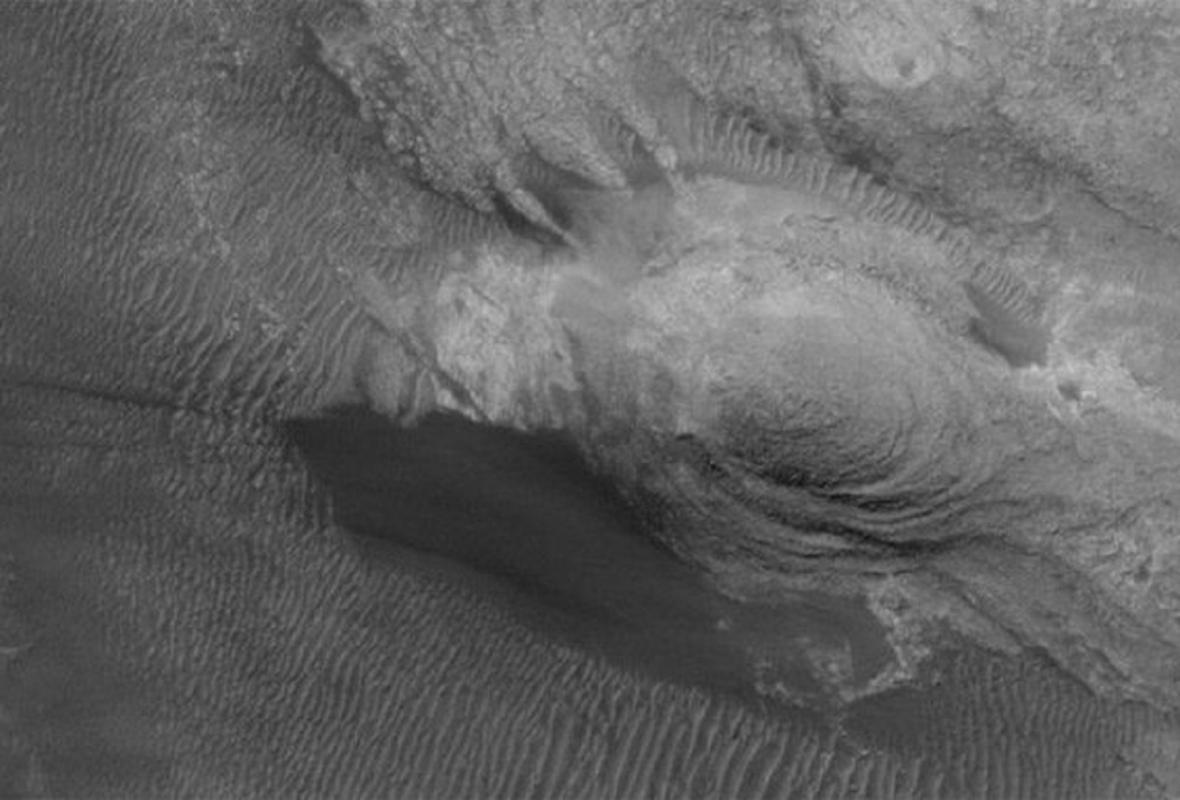 Papoušek na Marsu