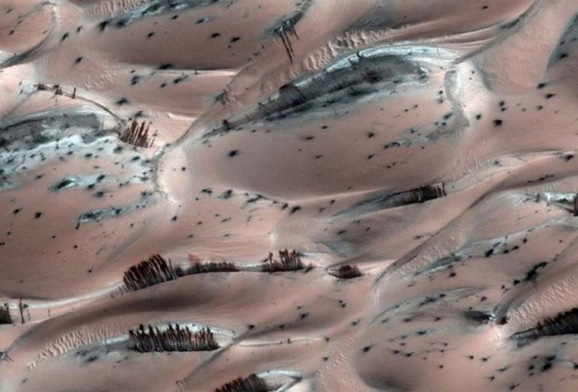 Stromy na Marsu