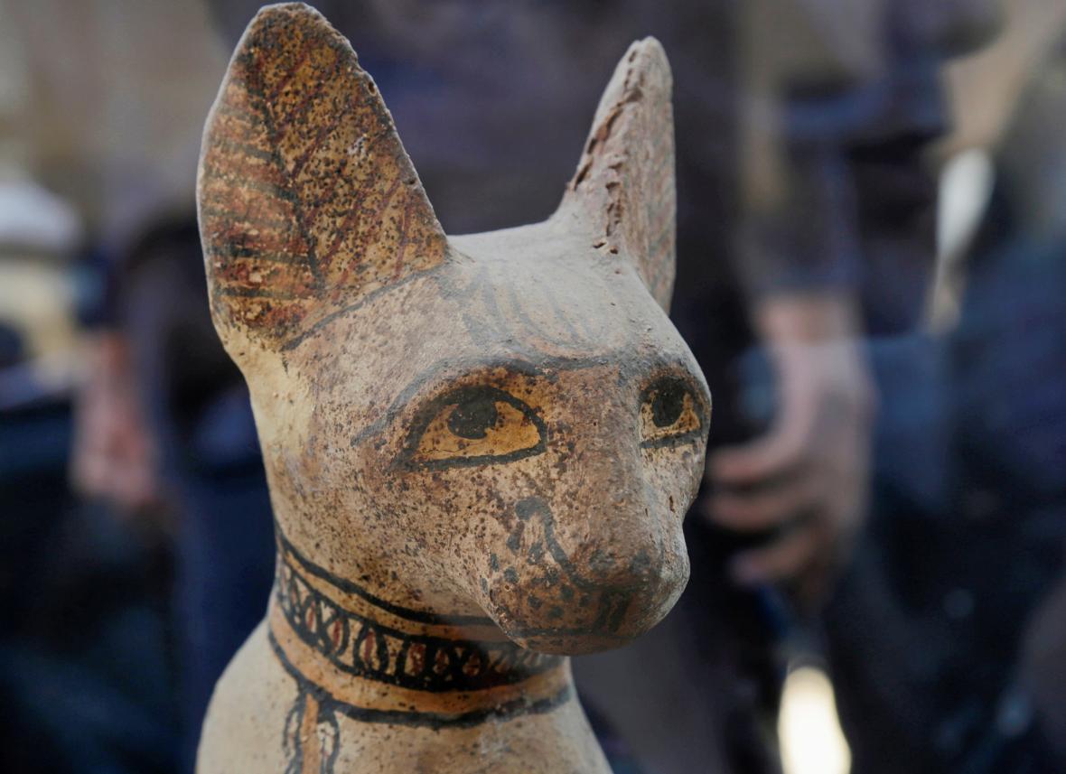 Objev hrobky s kočičími mumiemi