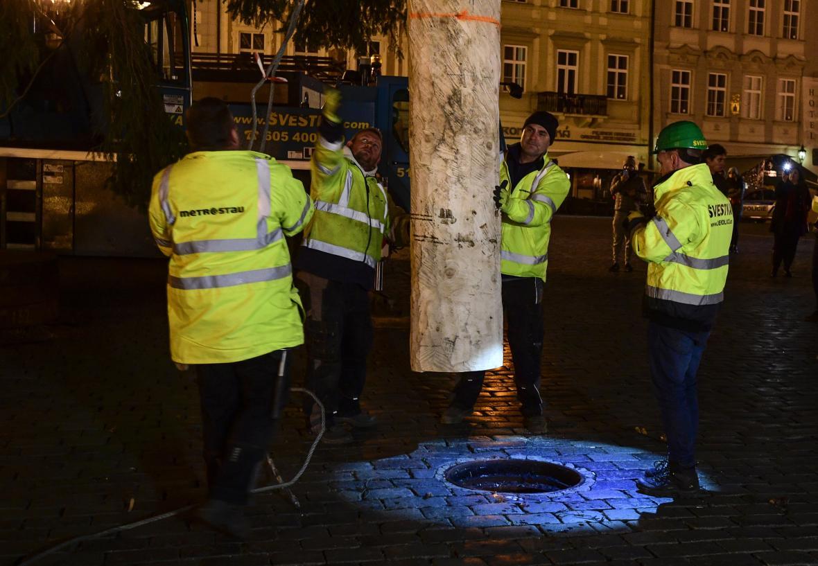 Vánoční strom ze Semil byl vztyčen na Staroměstkém náměstí v noci 25.listopadu