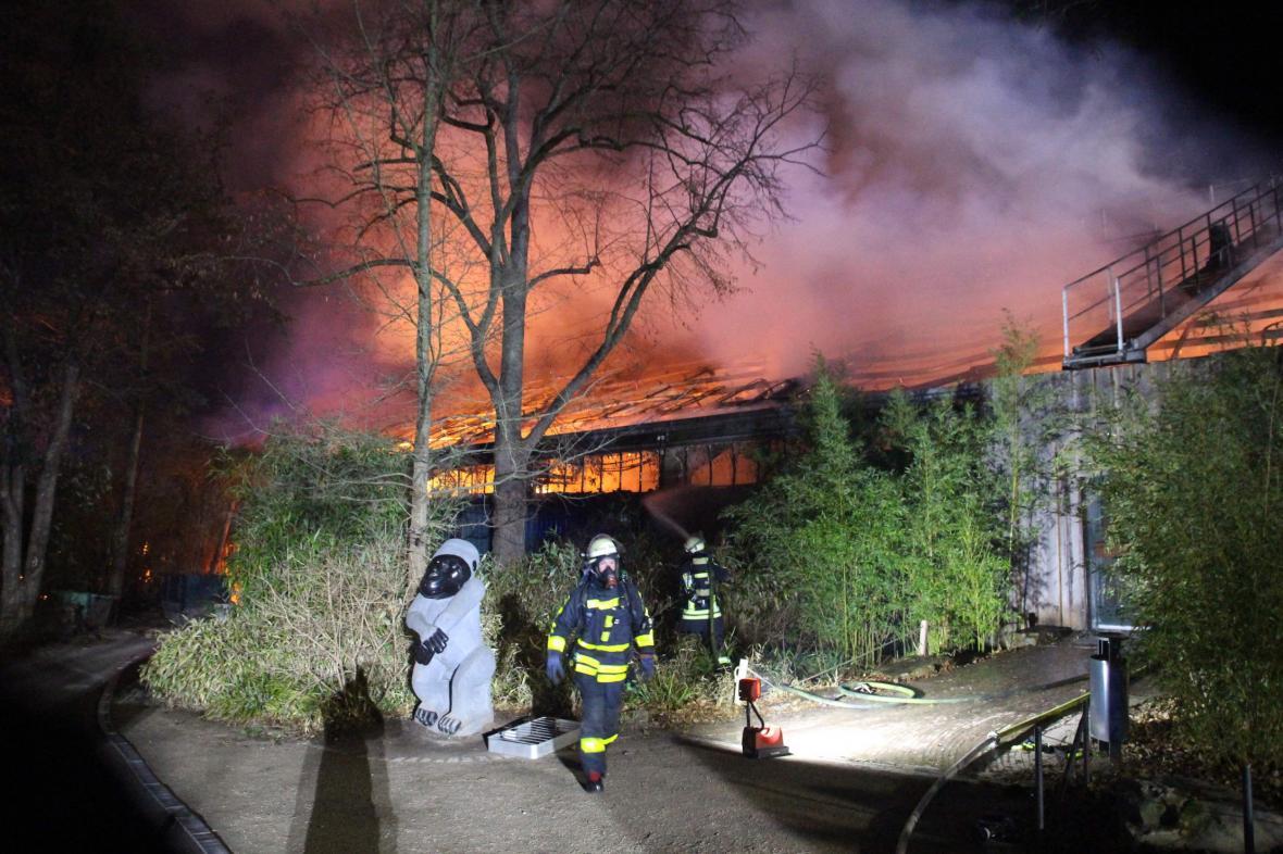 Požár v zoo v Krefeldu