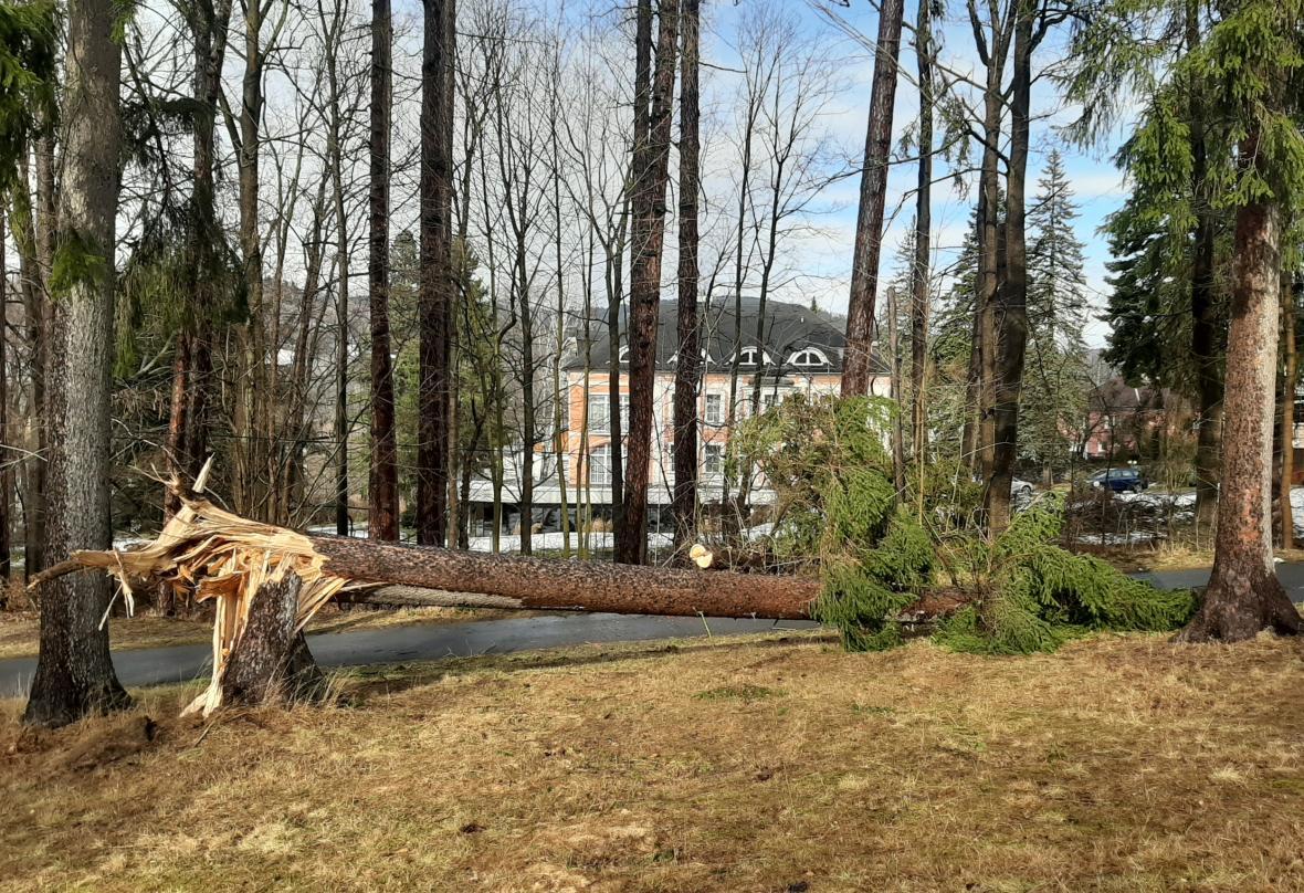Kvůli větru vyjížděli hasiči ve Středočeském kraji od k více než stovce událostí, ve většině případů odstraňovali popadané stromy. Na snímku Hasiči zasahovali v Kladně, kde silný vítr posunul střechu