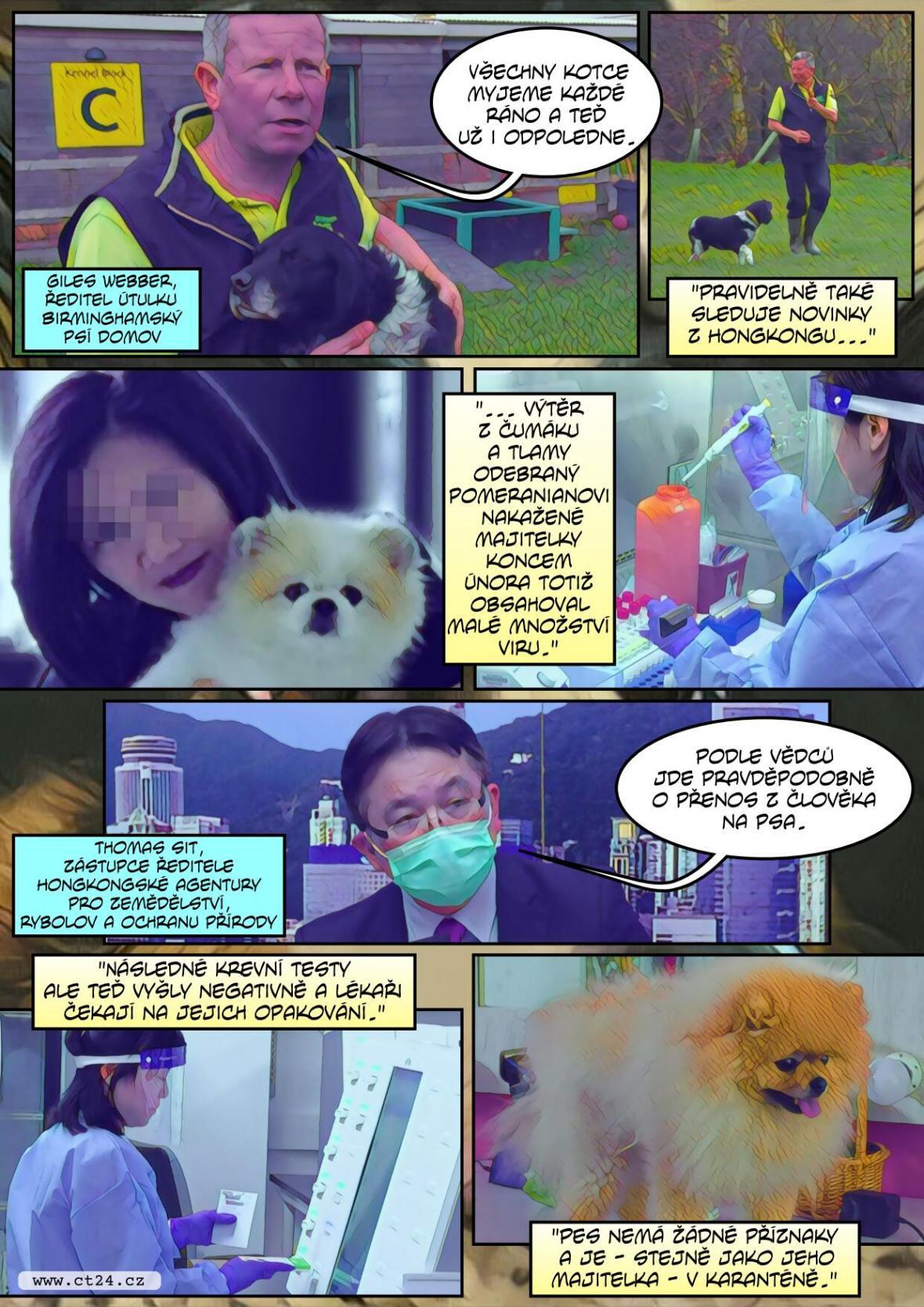Zvířata nepřenáší koronavirus