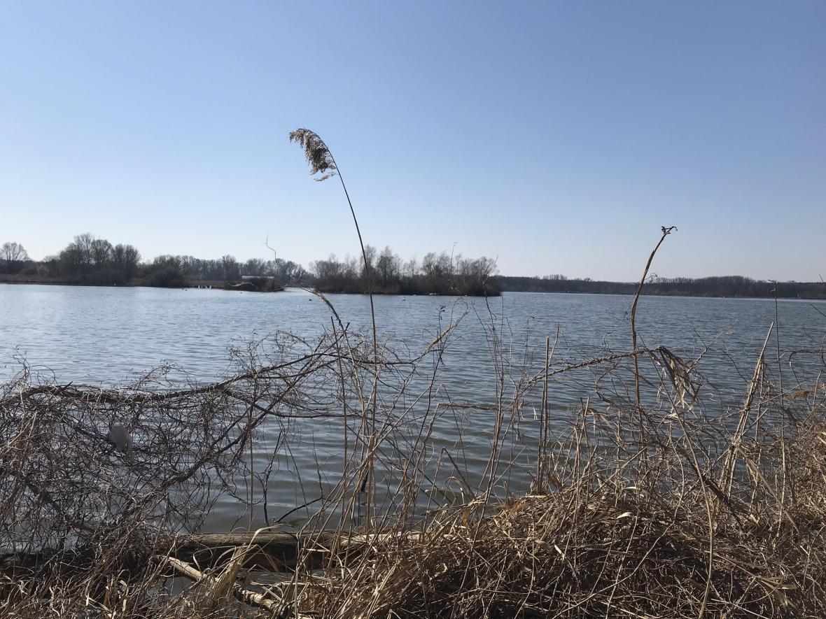Plánovaná ptačí oblast u řeky Kyjovky