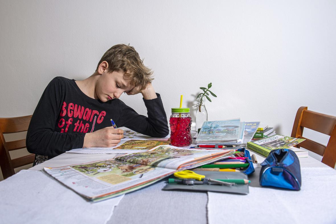 Domácí výuka