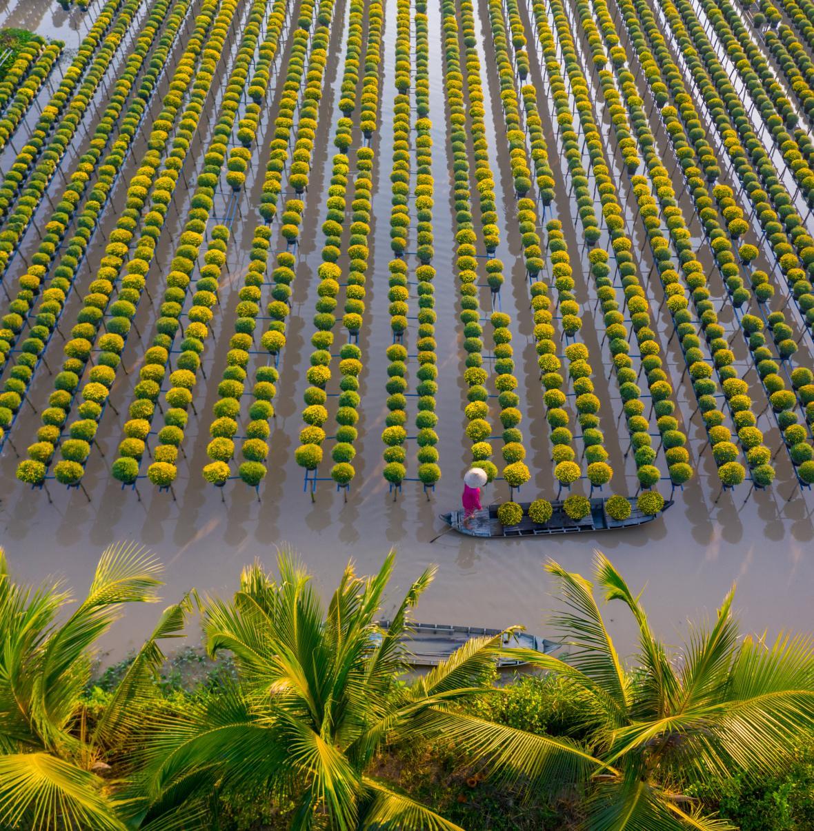 Vietnam z ptačího pohledu