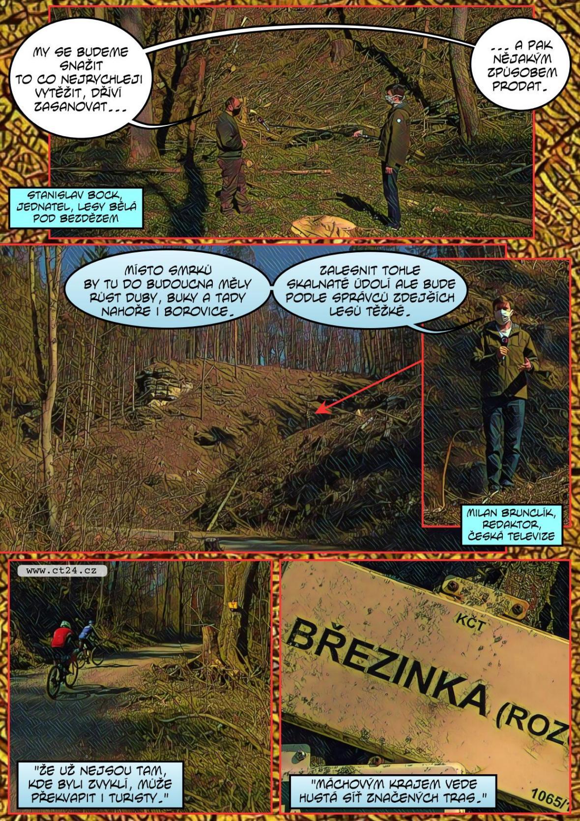 Kůrovec mění krajinu Česka