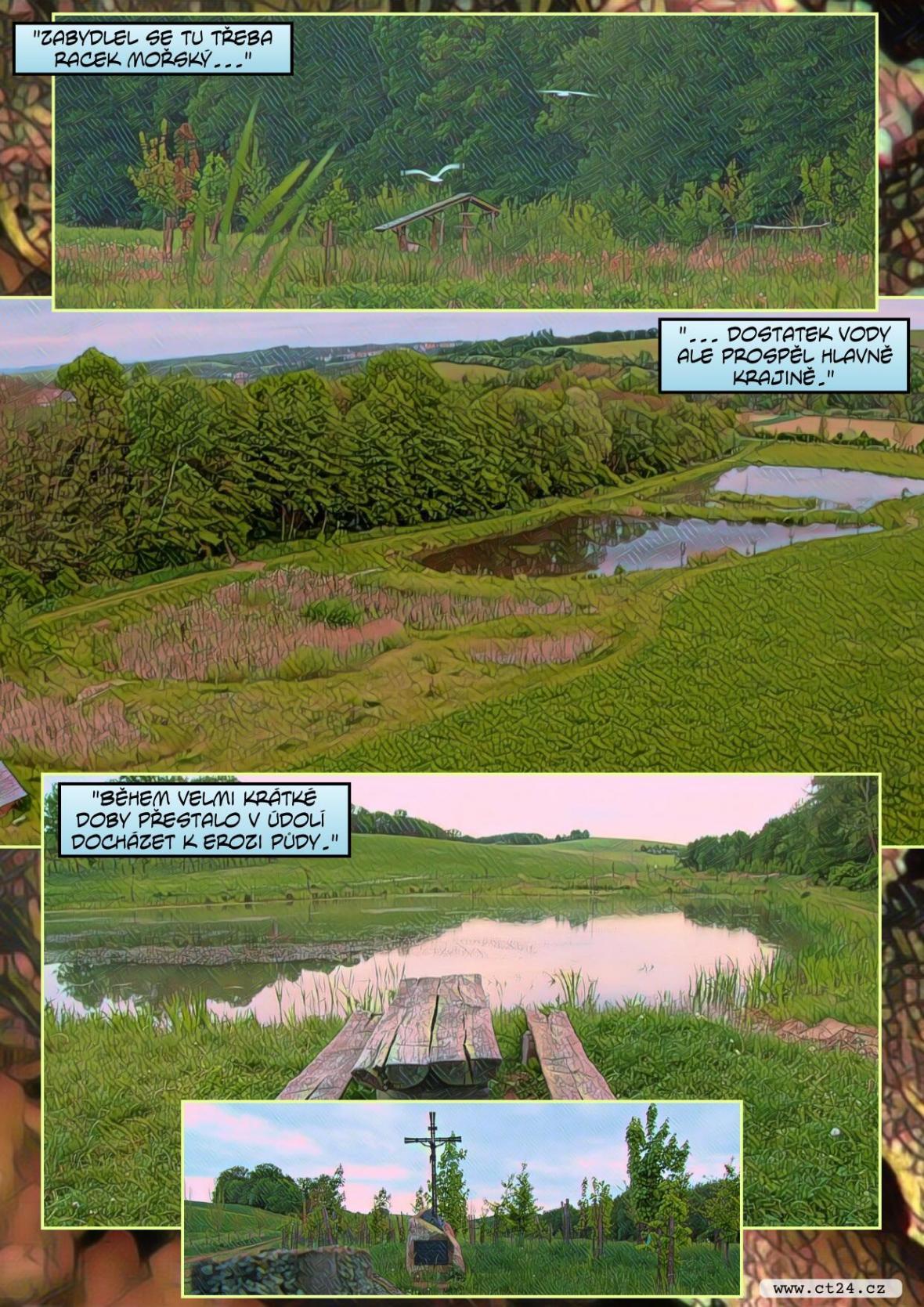 Do České krajiny se vracejí mokřady