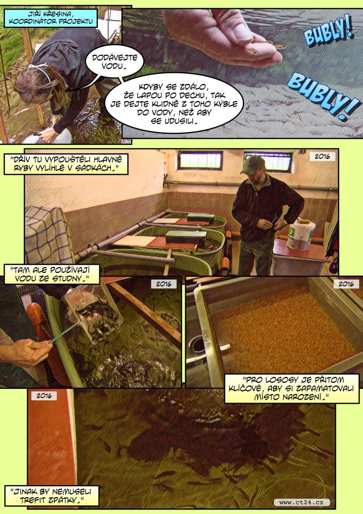 Nové přechody pro lososy
