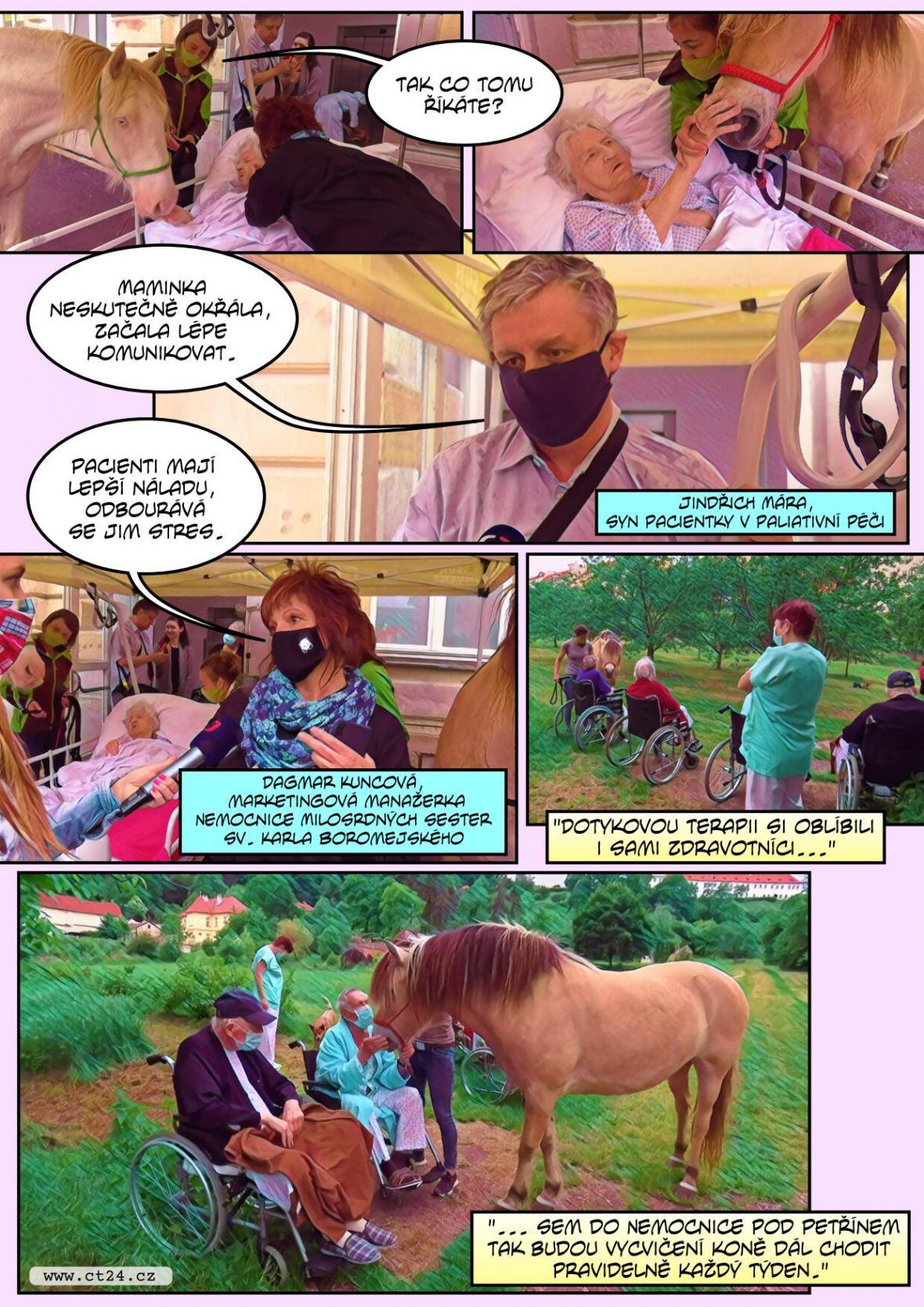 V pražské nemocnici léčí za pomoci koní