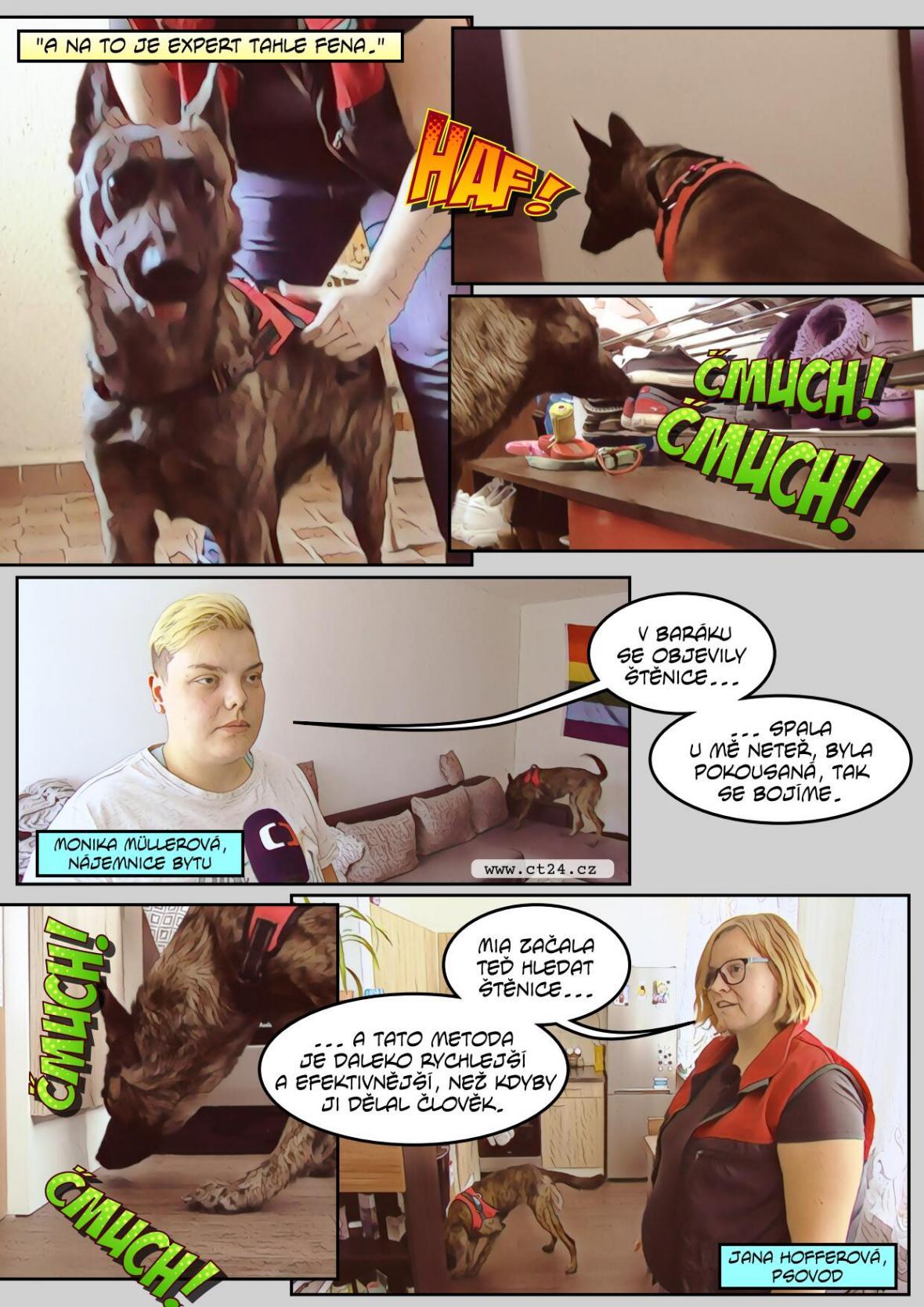 Pes deratizátorem. Firmy na likvidaci parazitů mají novou pomocnici