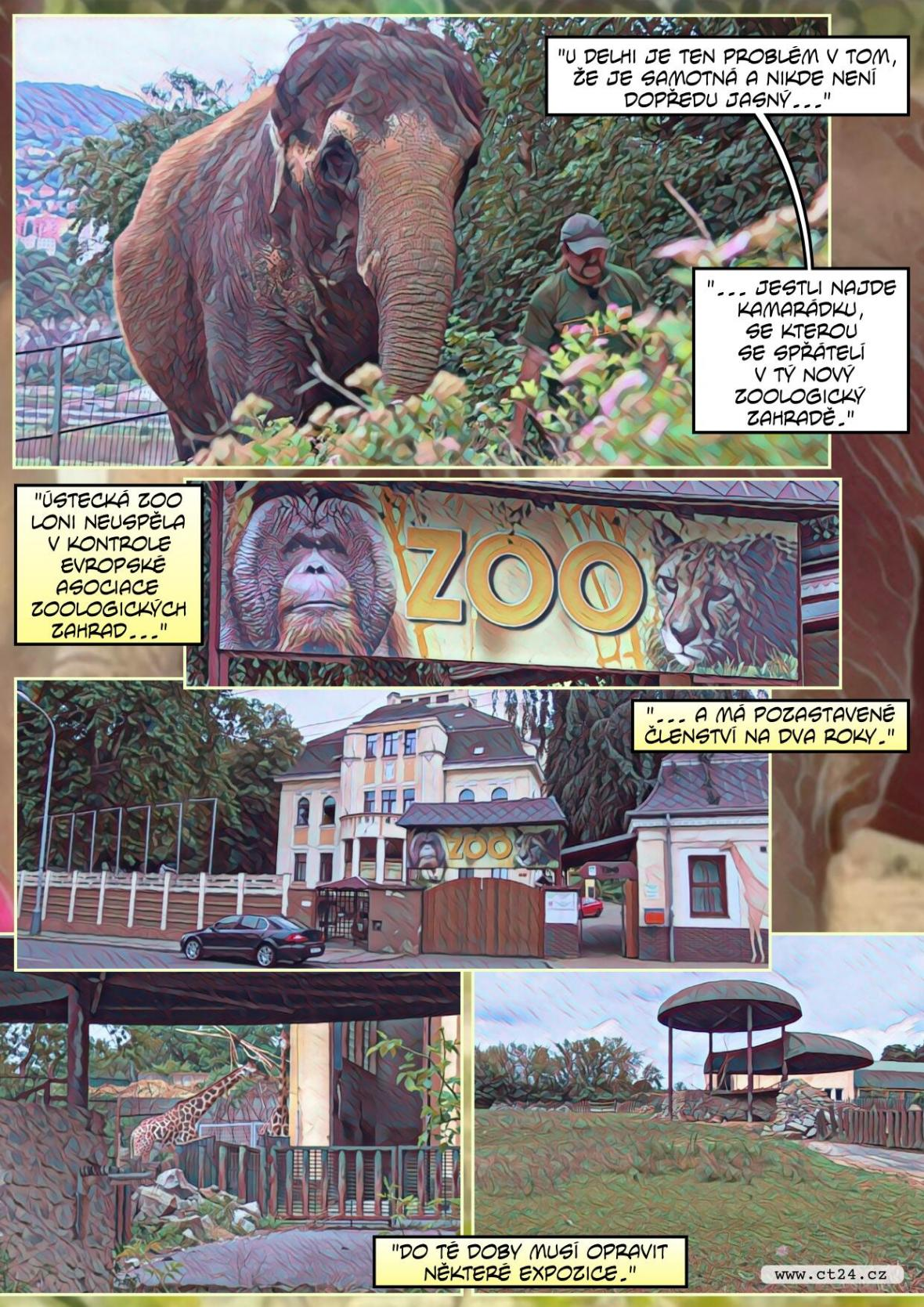 Slonice Dehli bude mít nový domov