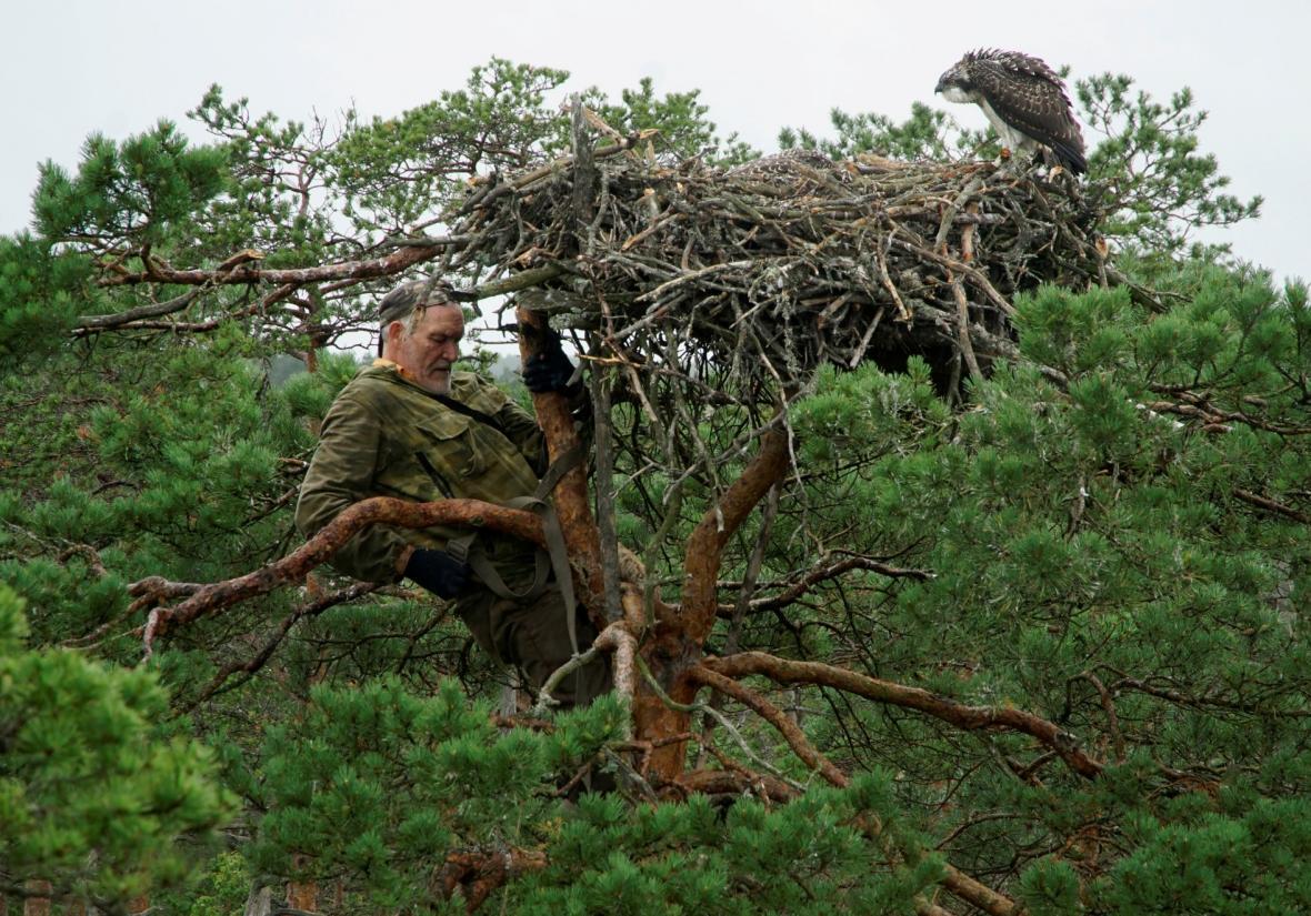 Běloruský ornitolog Ivanovski se stará o opeřence již
