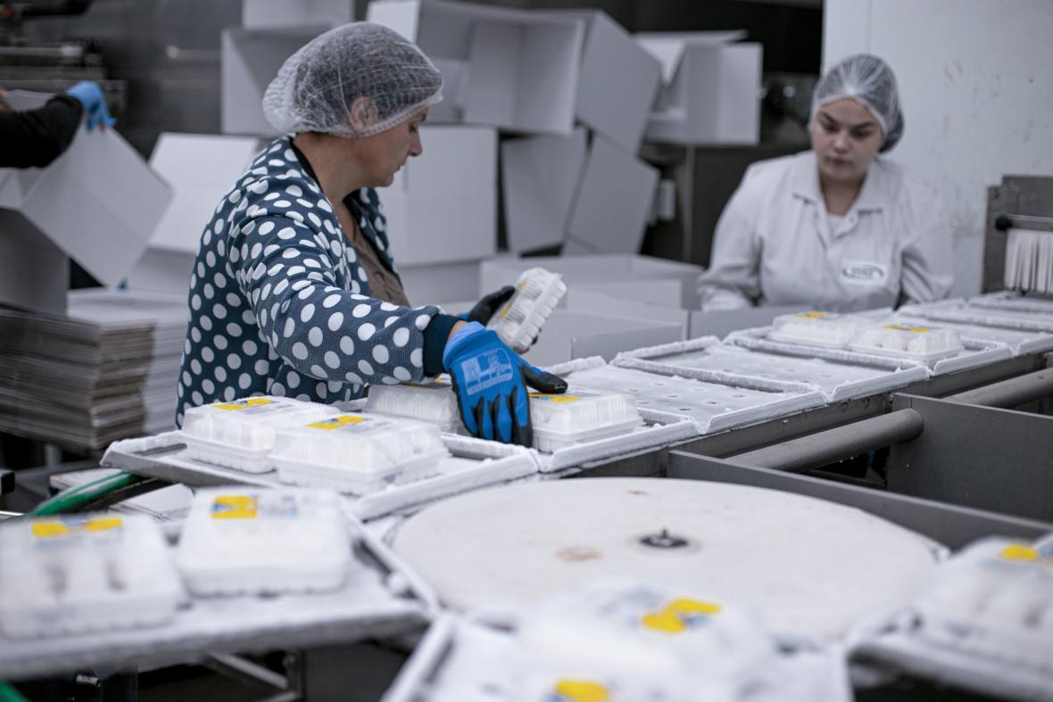 Pozvánka do světa polárkového dortu
