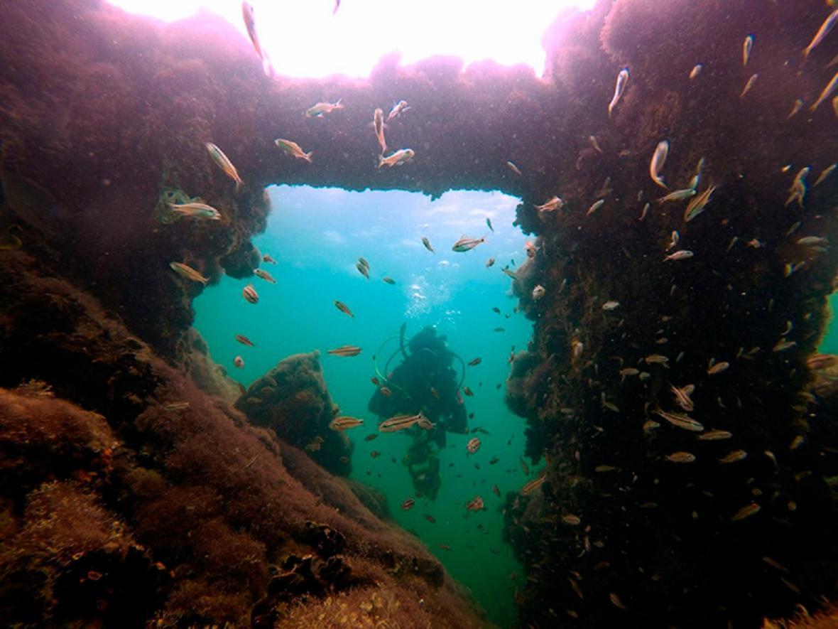 Vrak lodi La Unión