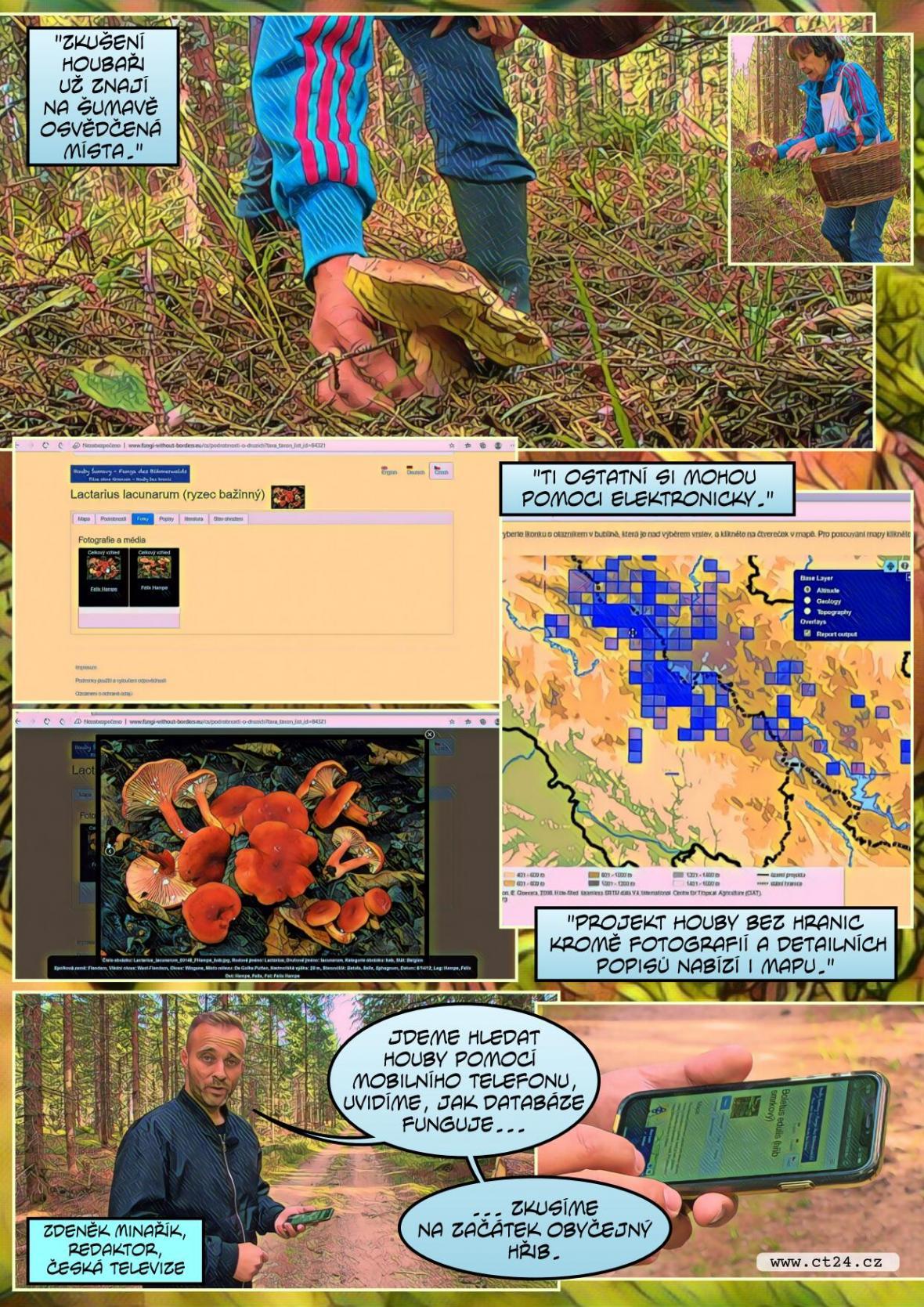 Houbaři na Šumavě si mohou pomoci elektronicky, park připravil databázi hub