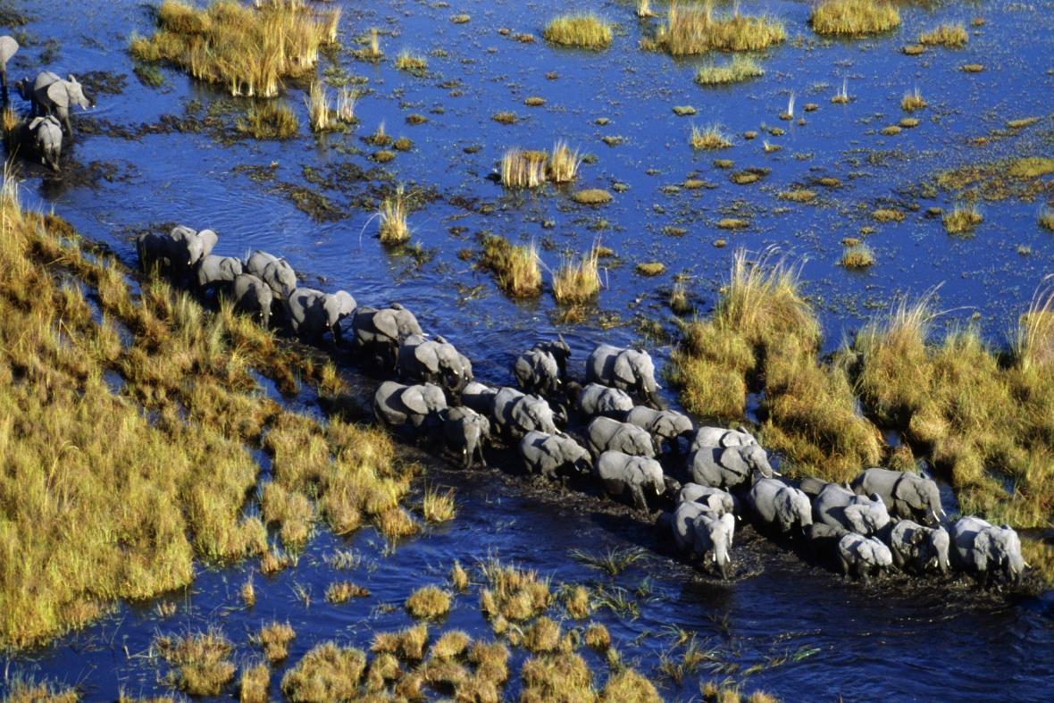 Život u Okavanga