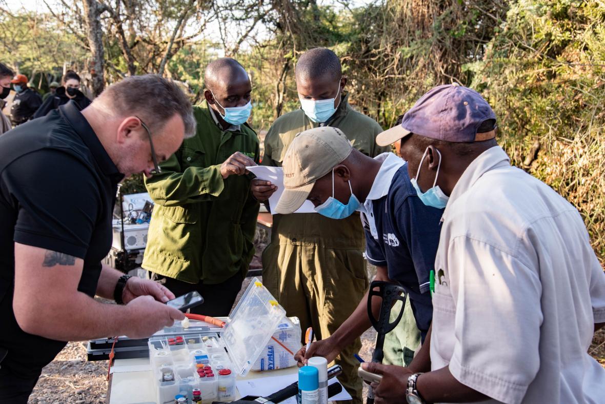 Záchrana nosorožců pomocí kmenových buněk