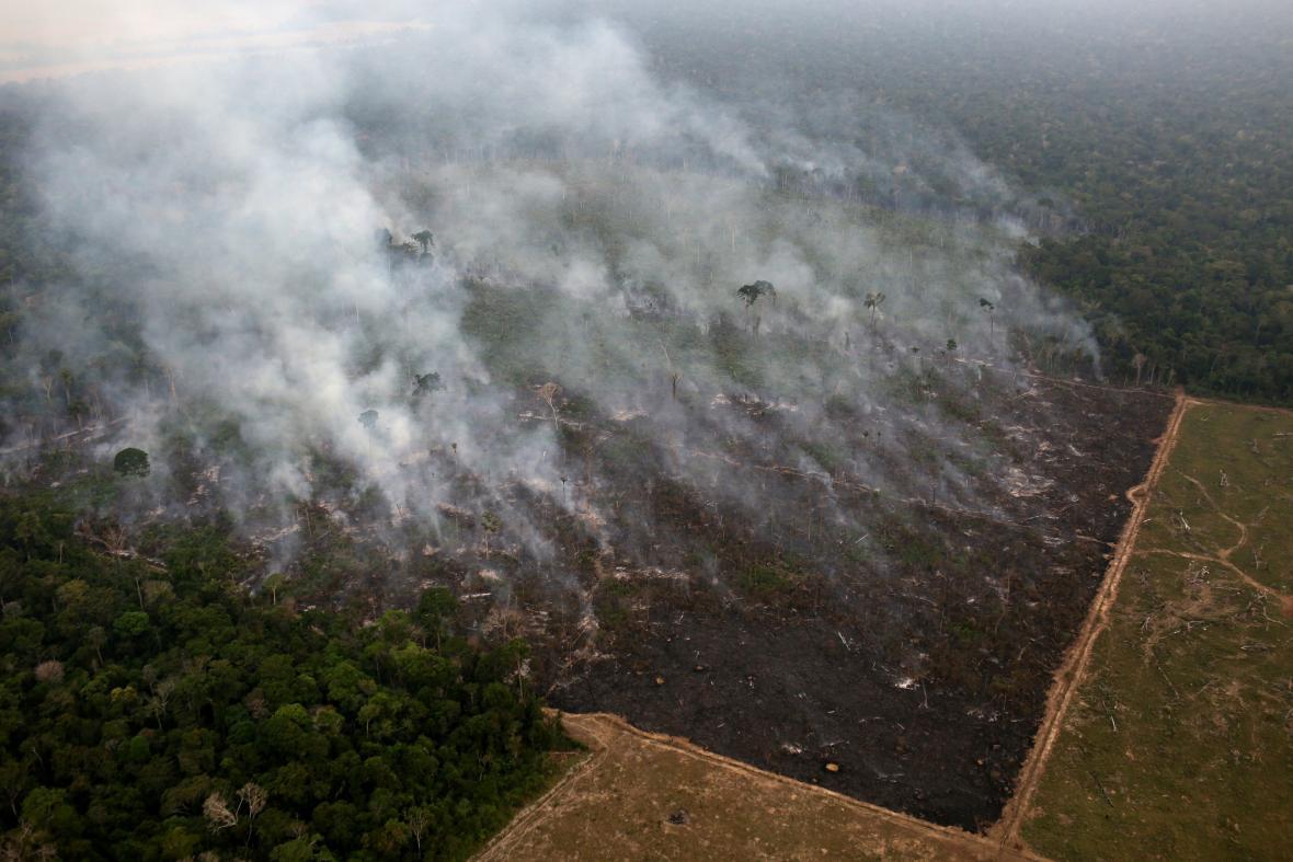 Amazonský prales, ekosystém v ohrožení