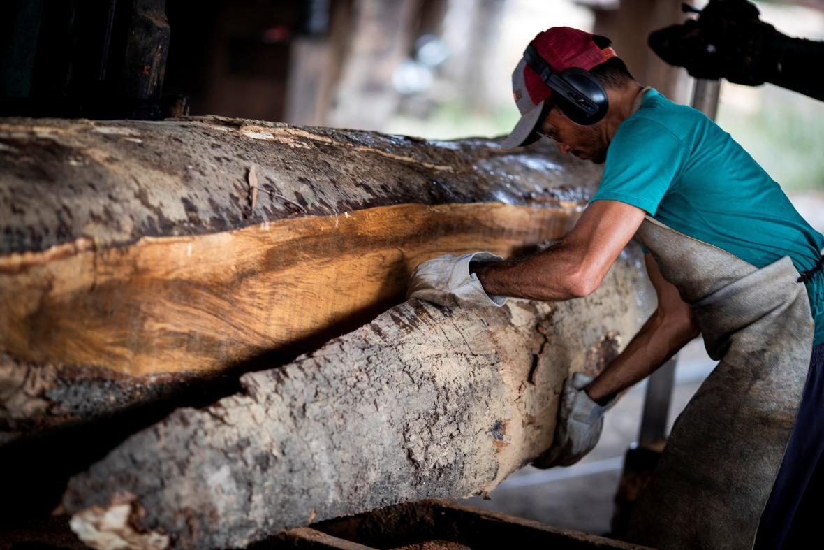 Těžba dřeva znamená pro řadu lidí obživu a impuls pro ekonomiku