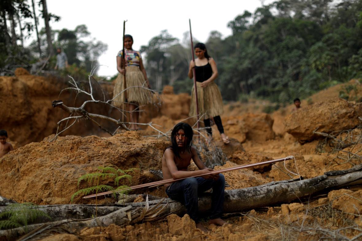 Domorodí lidé z kmene Mura v odlesněné oblasti