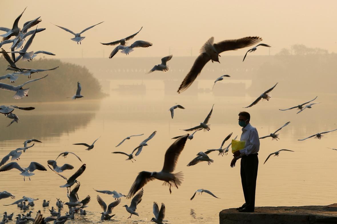 Znečištění ovzduší v Novém Dillí
