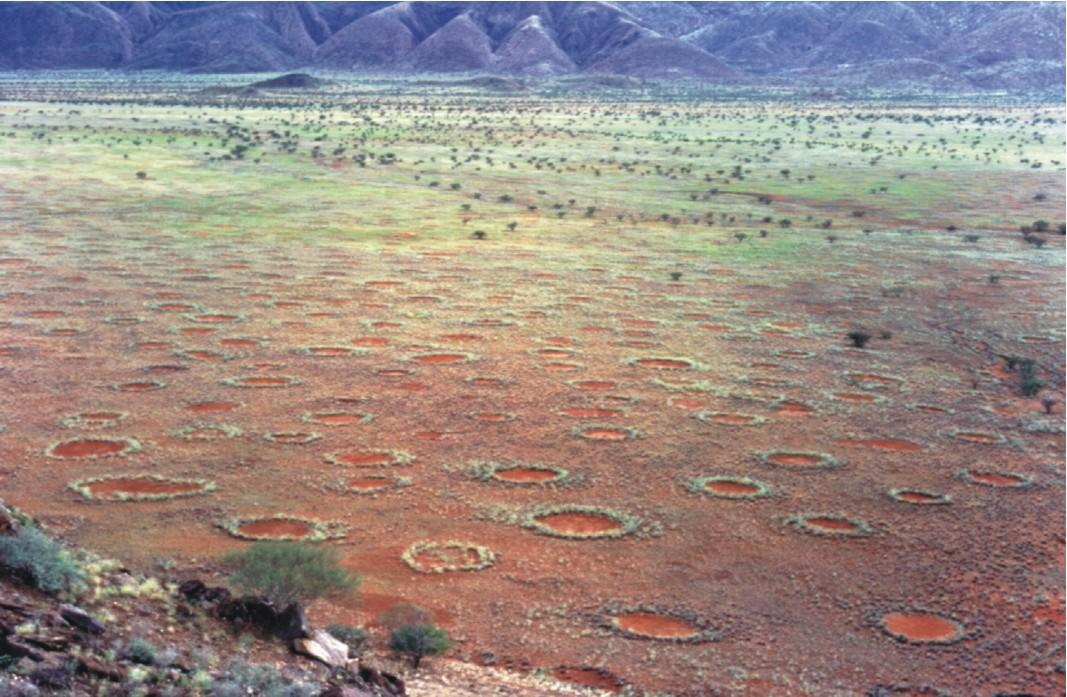 Kruhy v africké poušti