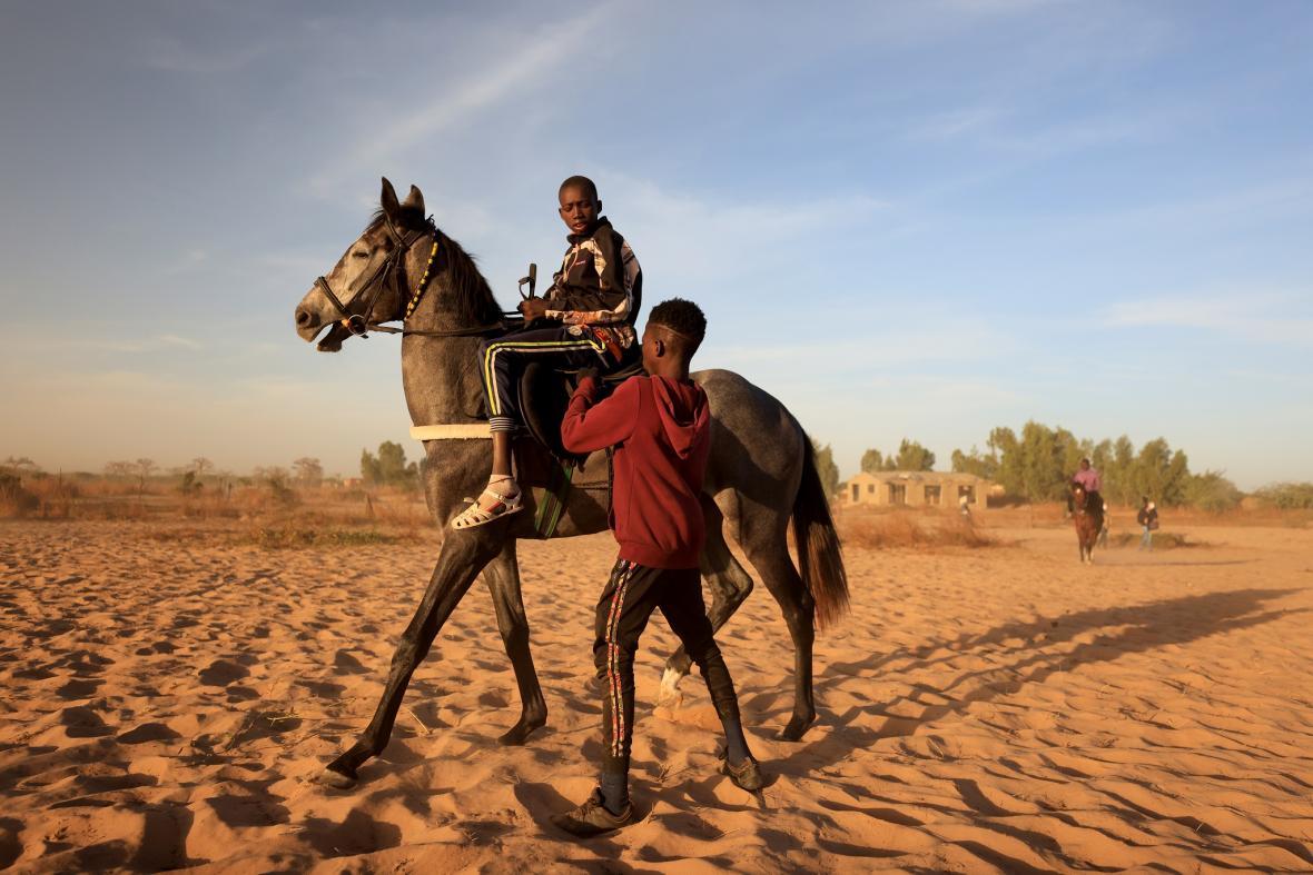 Senegalský žokej