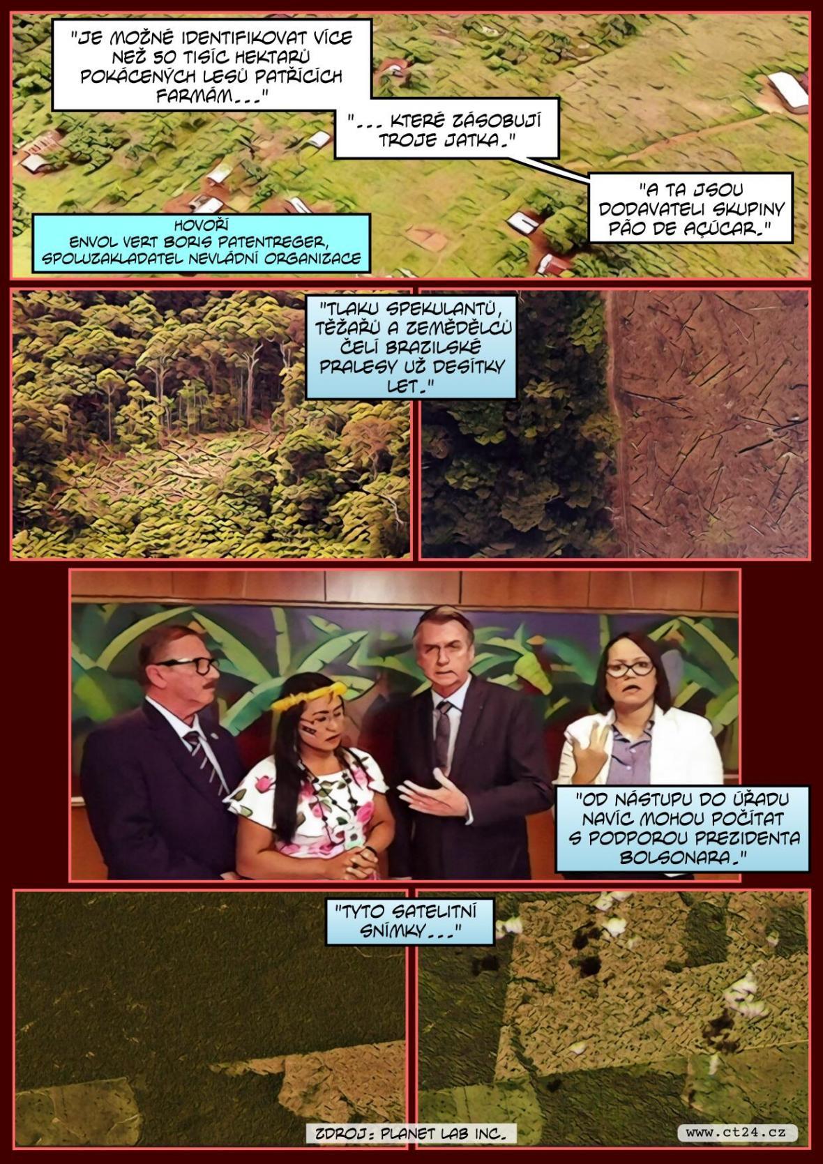 Svět vinou člověka přišel už o dvě třetiny deštných pralesů