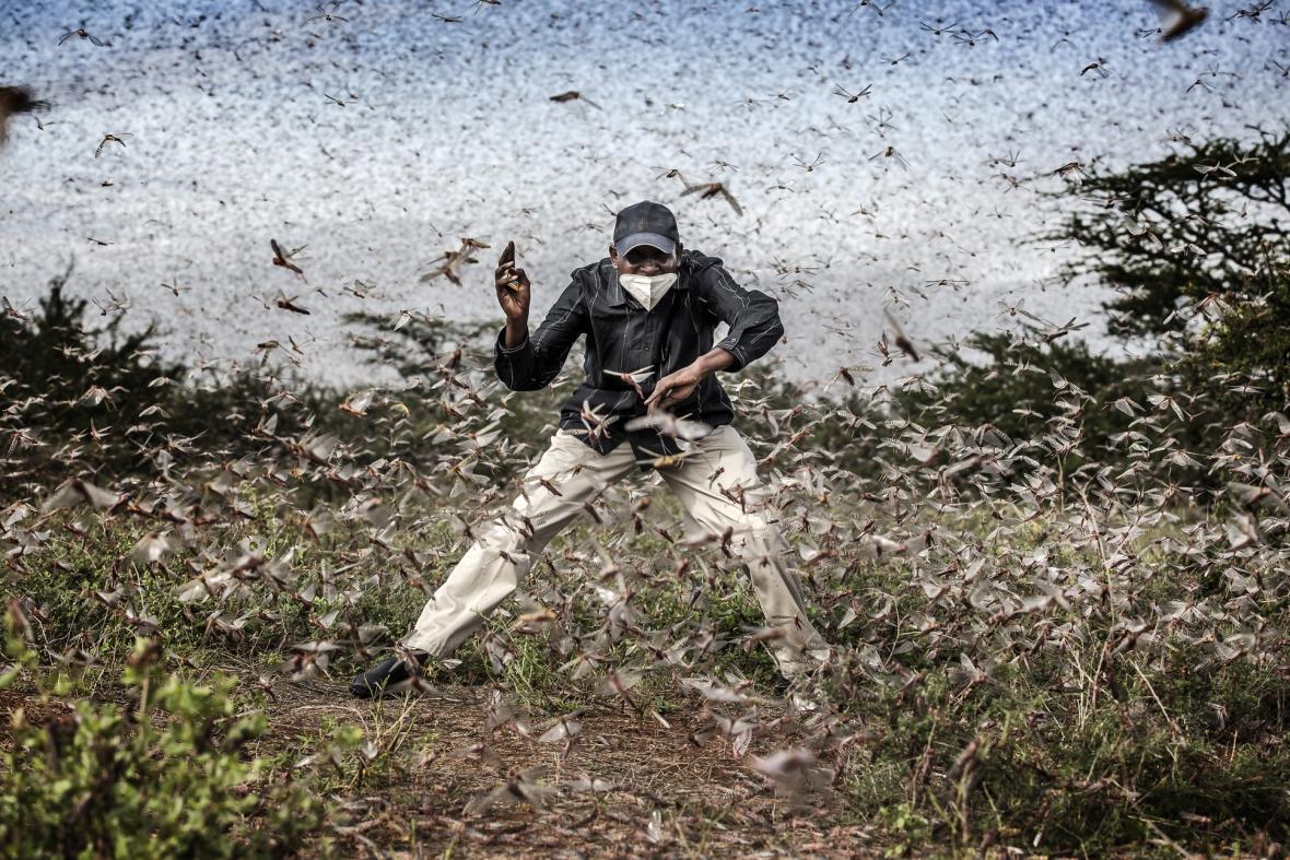 Nominace World Press Photo 2021 v kategorii Příroda