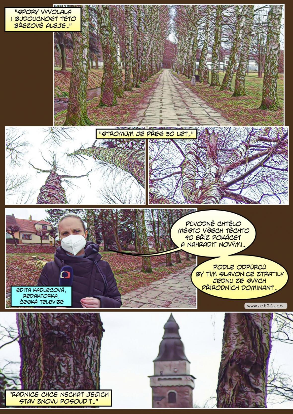 Ve Slavonicích protestují proti kácení stromů. Obec se brání, že obnova zeleně je potřeba