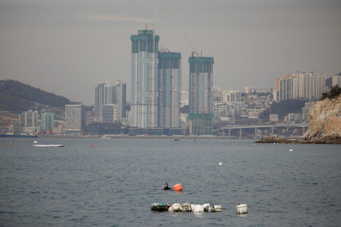 Nejstarší potápěčky světa pociťují důsledky klimatických změn. Rychlé oteplování moře v oblasti jihokorejské oblasti Jeju má za následek snižování počtu mořských živočichů