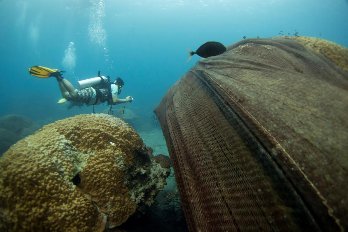 """Opuštěné rybářské sítě pokrývající korálový útes v chráněné oblasti Ko Losin. Skupina dobrovolných potápěčů, vědecké centrum pro výzkum pobřeží a thajské královské námořnictvo odstraňuje v této oblasti sítě """"duchů"""""""