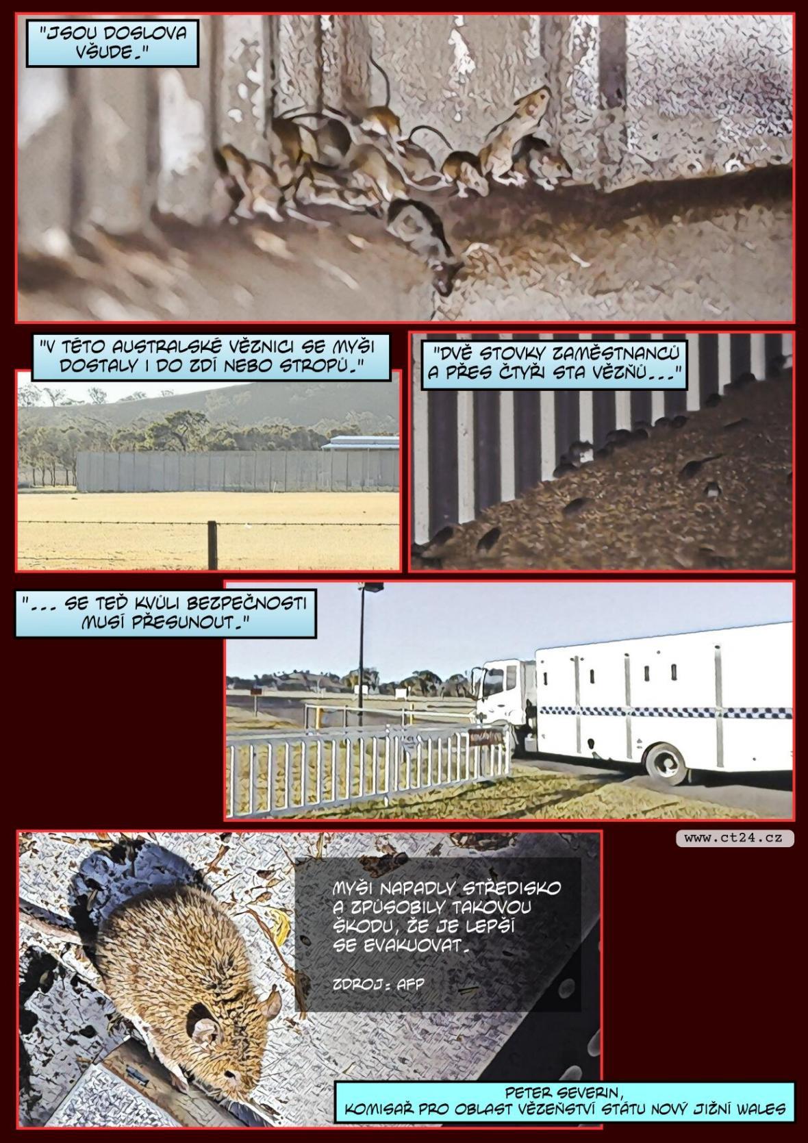 Záplava myší vyhnala v Austrálii vězně i jejich dozorce. Hlodavci poničili bezpečnostní systém