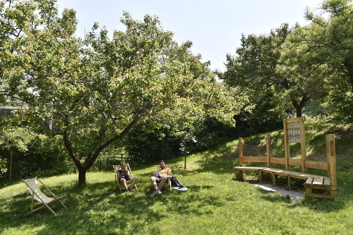 VOtevřené zahradě v centru Brna, vzniká včelí pozorovatelna s posezením, vyvýšené záhony s medonosnými rostlinami a ukázkový prosklený úl