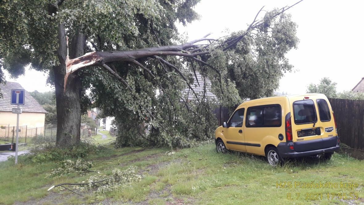Silné bouřky na Plzeňsku vyvracely stromy