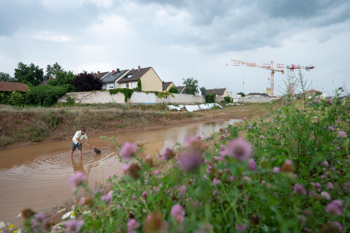 Německý biolog Marco Wagemann chytá obojživelníky a plazy ve městě Landau, v místě, které má projít novou zástavbou. Drobná zvířata následně relokuje na vhodné, přede určené místo