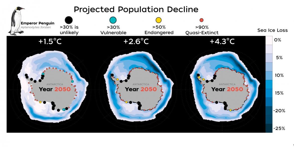 Tři modely úbytku tučňáků císařských