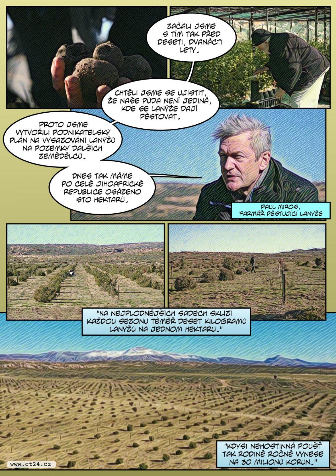 Pěstování lanýžů zkouší už i v Jihoafrické republice. Prodávají se za desítky milionů korun