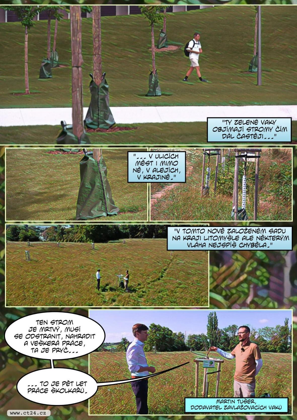 Na péči o městské stromy se zapomíná