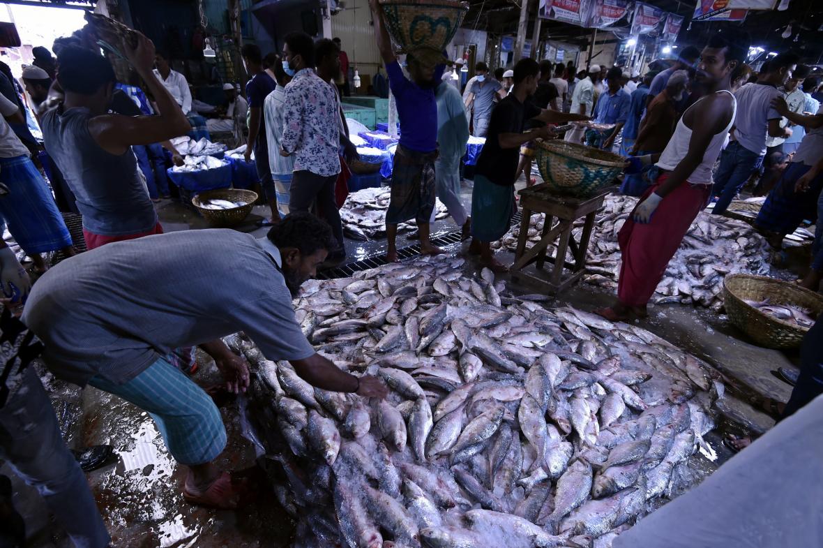 Obchodníci na rybím trhu ve městě Chandpur v Bangladéši se snaží prodat ryby, o které není zájem z důvodu vysoké ceny