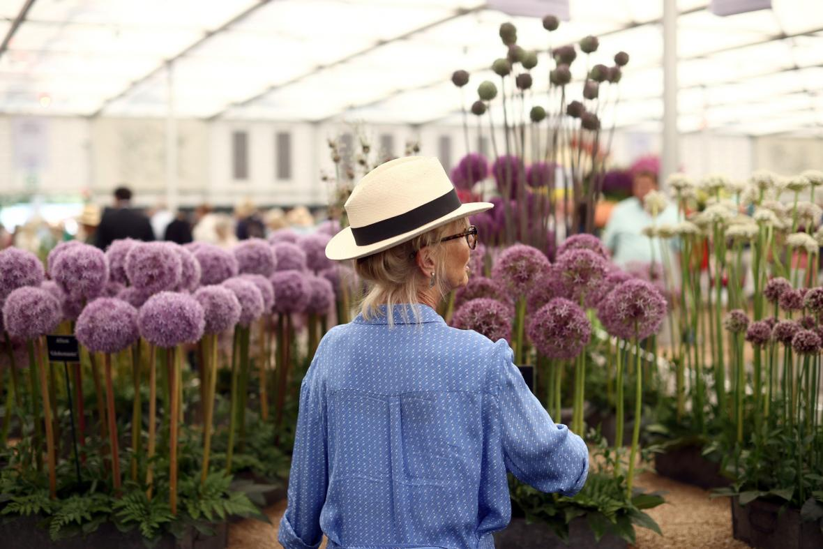 Přehlídka pěstitelů květin, floristů a aranžérů Chelsea Flower Show v Londýně nabízí milovníkům zahrad tu nejzajímavější podívanou ve Velké Británii