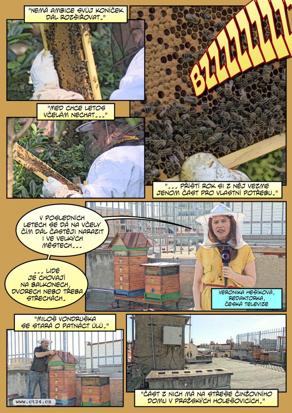 Stále více Čechů se věnuje včelaření