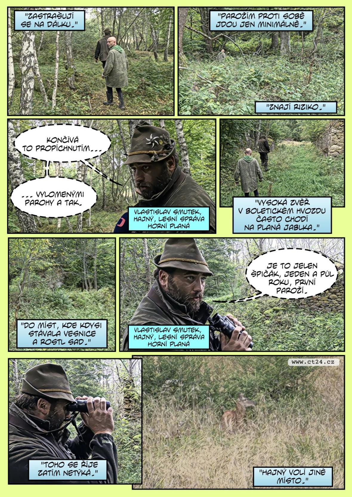 Vrcholí jelení říje